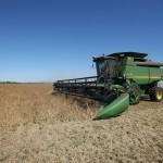 7-SGA8182-harvesting-1412x900